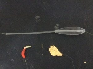 forellenangeln-mit-spirolino